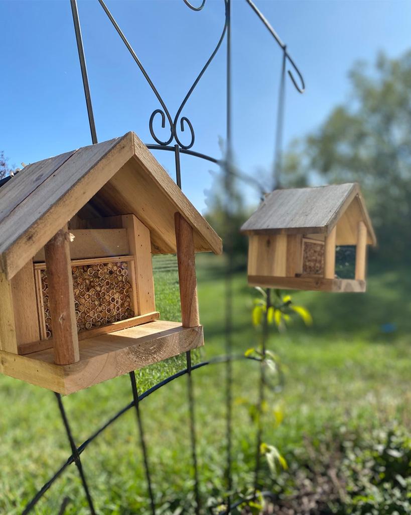 garden pollinators